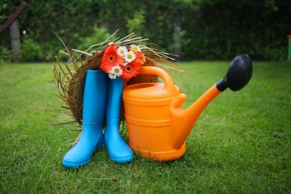 garden-3276321_1280